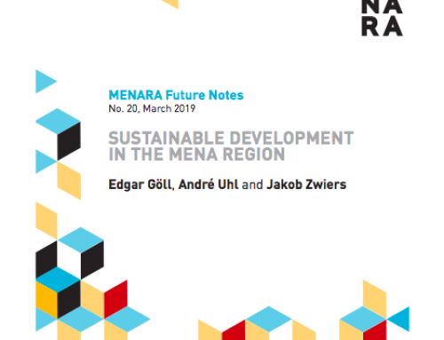 Sustainable Development in the MENA Region