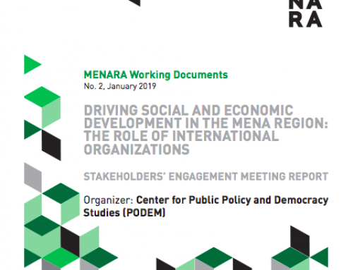 DRIVING SOCIAL AND ECONOMIC DEVELOPMENT IN THE MENA REGION: THE ROLE OF INTERNATIONAL ORGANIZATIONS